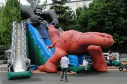 King Kong Crazy 3 Lane slide